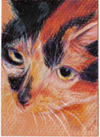 SOLD small ACEO Jewel kitty