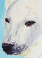 SOLD small ACEO Polar Bear